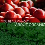 What Do You Really Know About Organic Food?